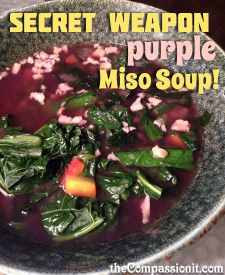 purplemisotexwm